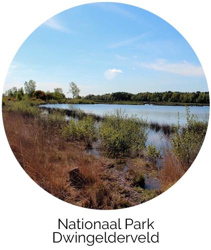 Nationaal Park Acker Lodges Drenthe