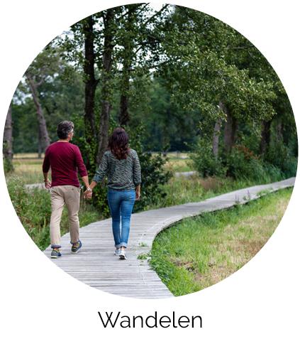 Wandelen Acker Lodges Drenthe